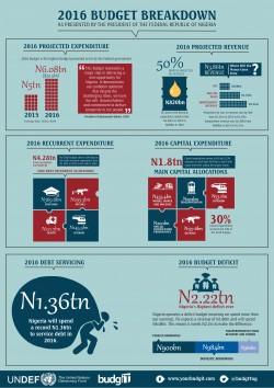 2016 Budget Infographic